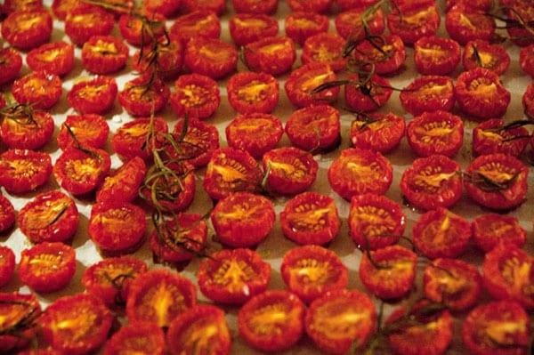 tomater-langtidsbagte