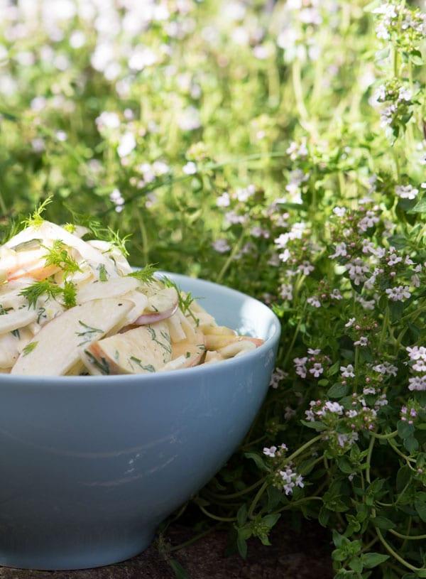 fennikel-salat-opskrift