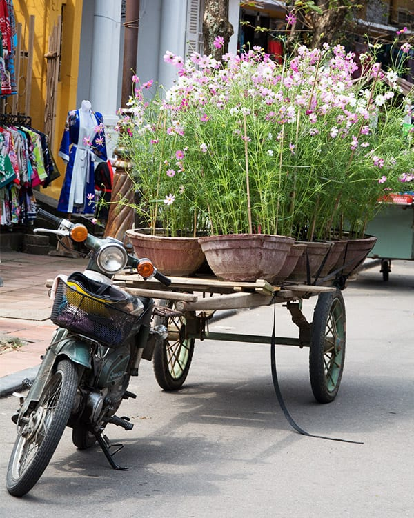 blomster-vietnam-scooter