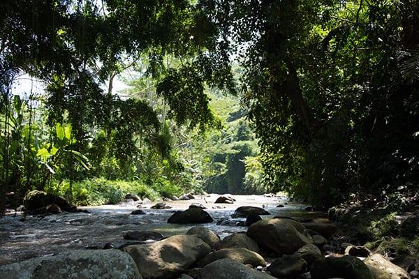 trekking_ubud