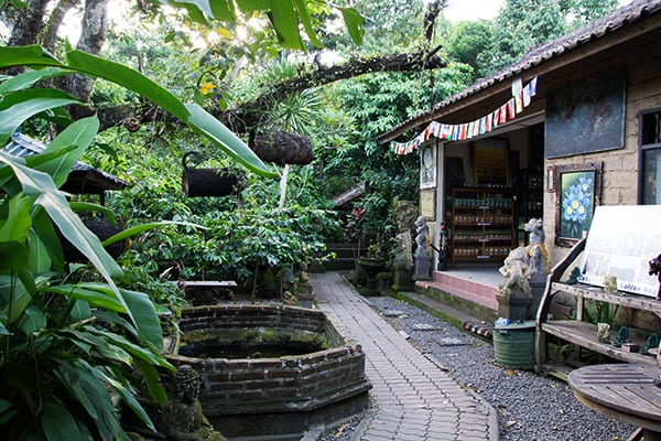 bali-coffee-visit