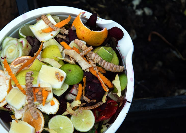 kompost grøntsager