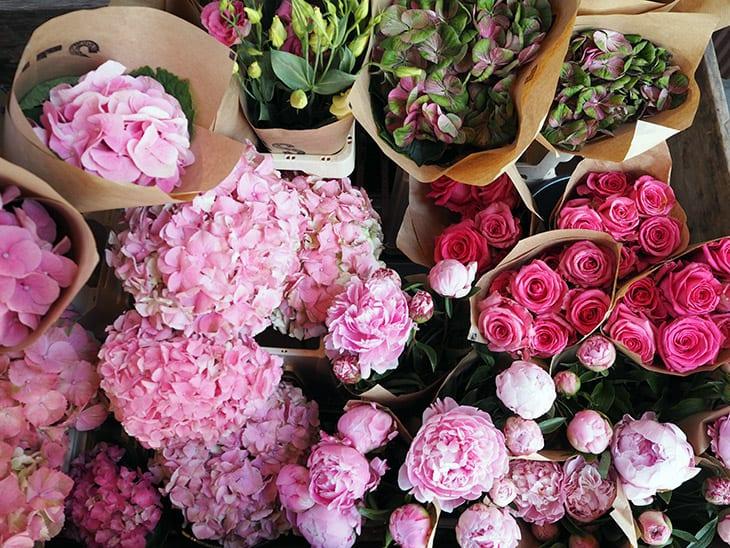 blomster grøn i bunden lyserød i toppen