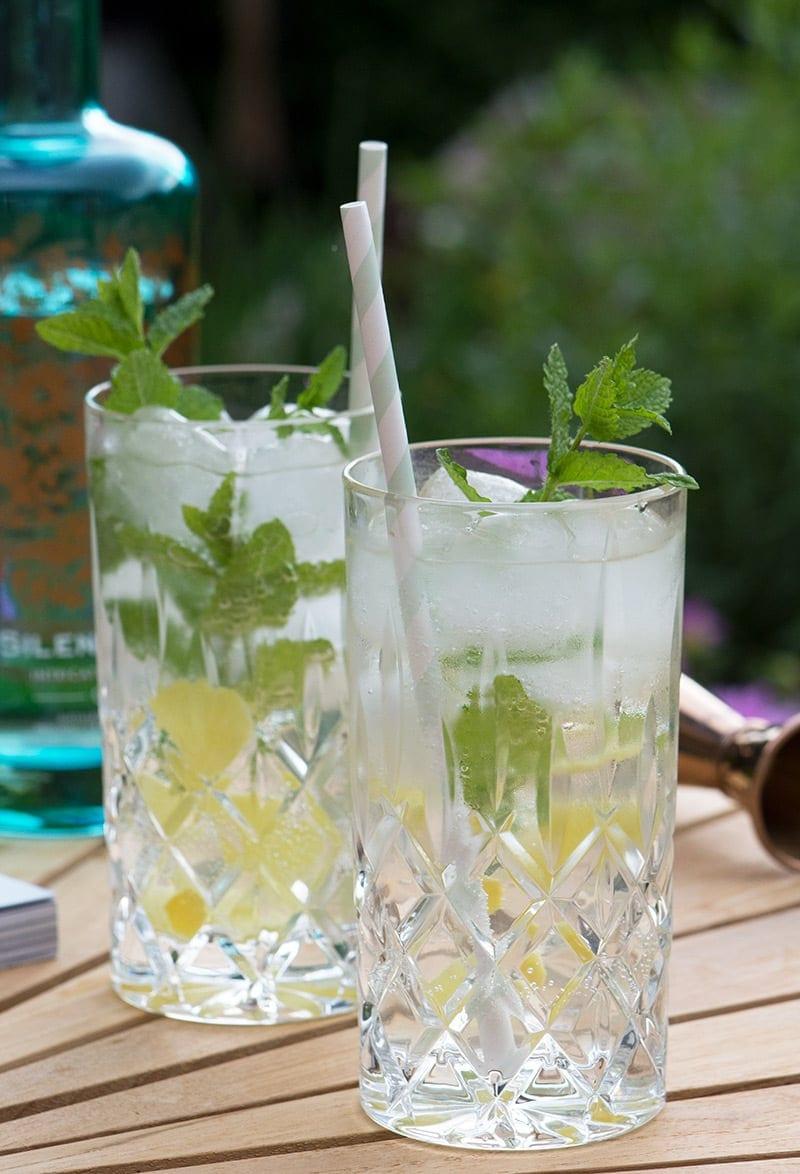 hyldeblomst og gin
