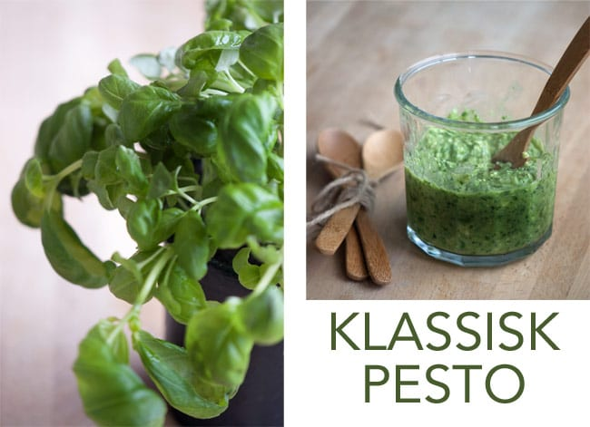 Traditionel Pesto