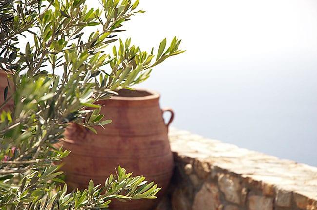 oliven-kreta