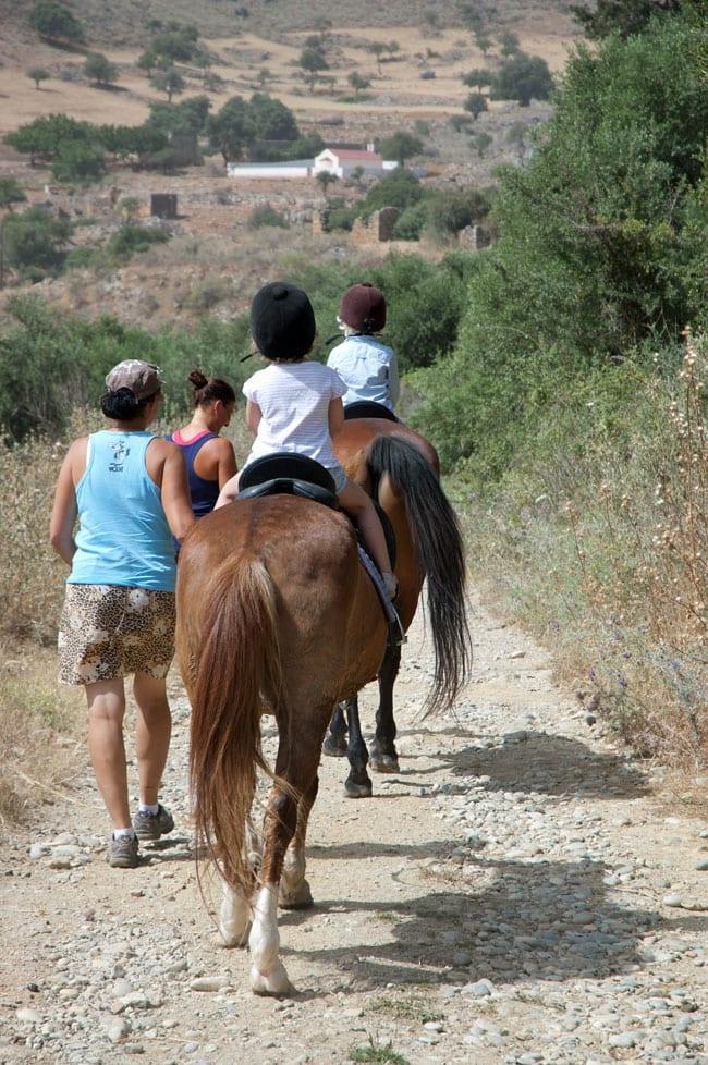paa-hesteryg